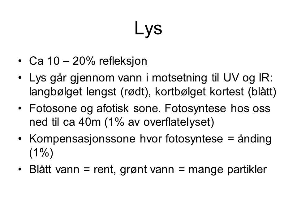 Lys Ca 10 – 20% refleksjon Lys går gjennom vann i motsetning til UV og IR: langbølget lengst (rødt), kortbølget kortest (blått) Fotosone og afotisk so