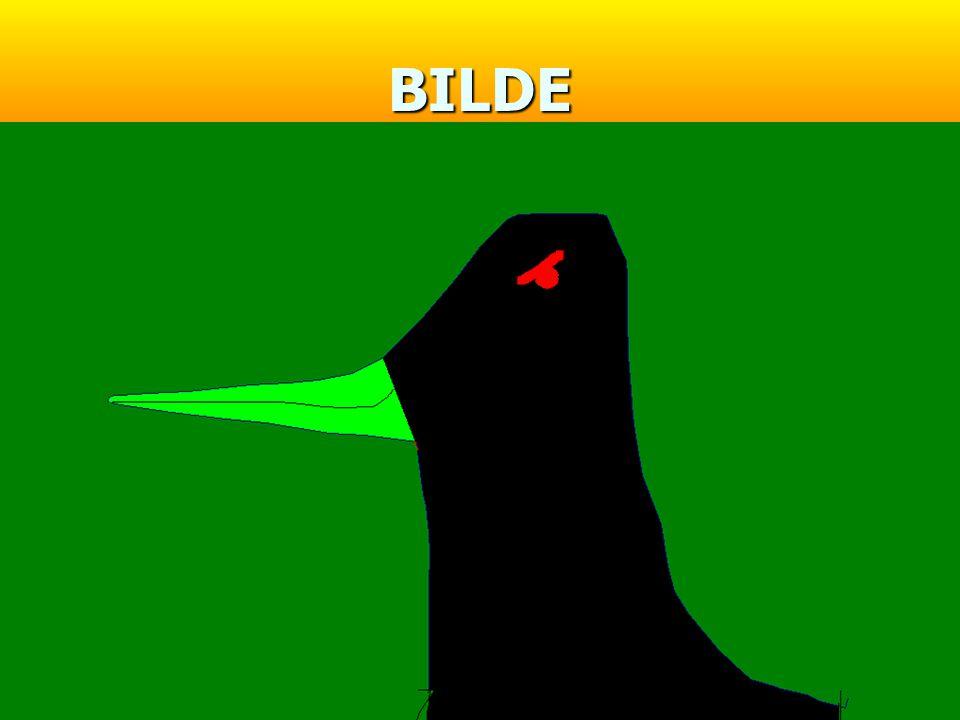 BILDE
