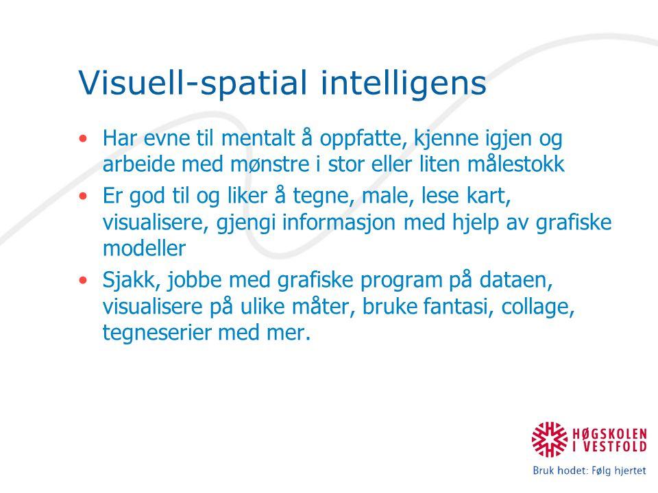 Visuell-spatial intelligens Har evne til mentalt å oppfatte, kjenne igjen og arbeide med mønstre i stor eller liten målestokk Er god til og liker å tegne, male, lese kart, visualisere, gjengi informasjon med hjelp av grafiske modeller Sjakk, jobbe med grafiske program på dataen, visualisere på ulike måter, bruke fantasi, collage, tegneserier med mer.