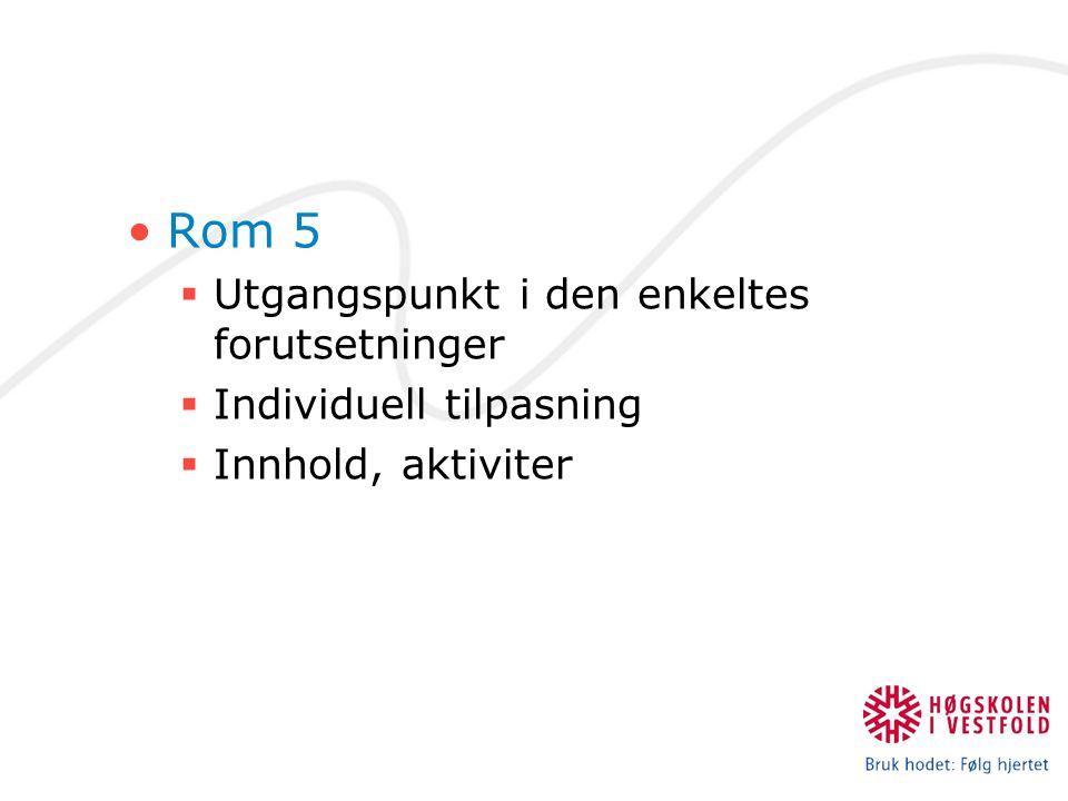 Rom 5  Utgangspunkt i den enkeltes forutsetninger  Individuell tilpasning  Innhold, aktiviter