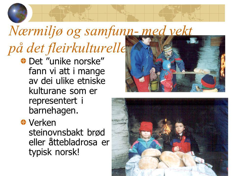 """Nærmiljø og samfunn- med vekt på det fleirkulturelle Det """"unike norske"""" fann vi att i mange av dei ulike etniske kulturane som er representert i barne"""
