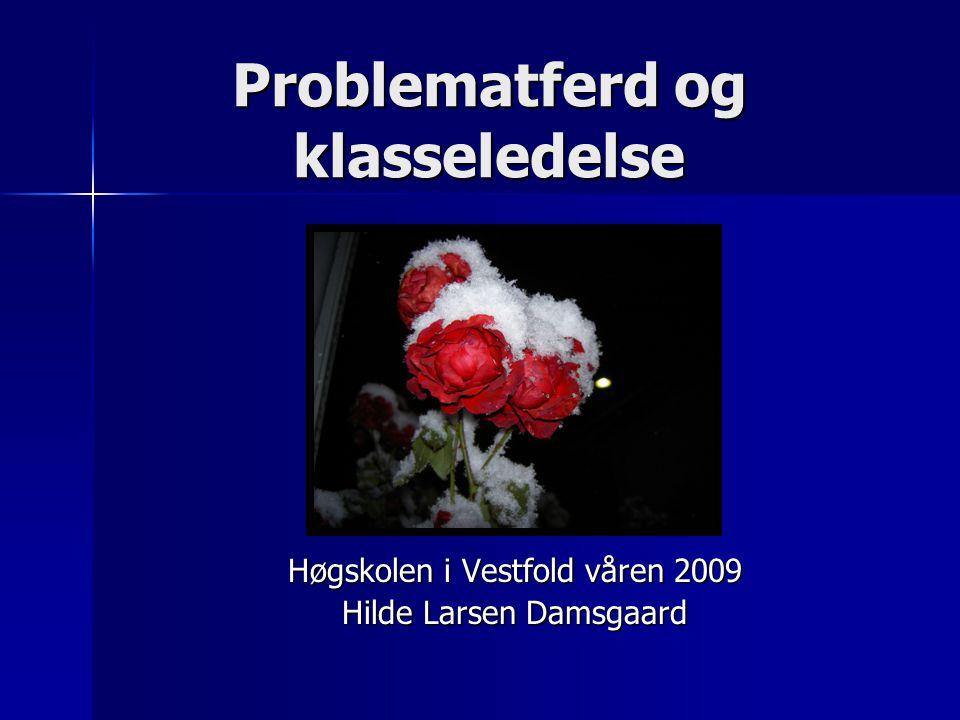 Problematferd og klasseledelse Høgskolen i Vestfold våren 2009 Hilde Larsen Damsgaard