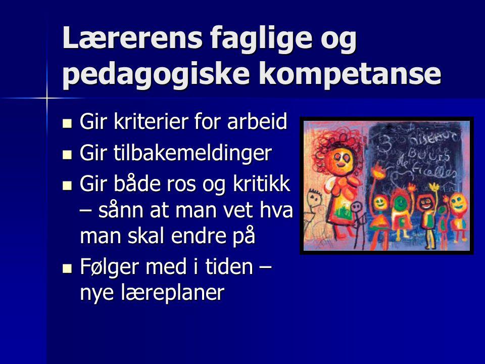 Lærerens faglige og pedagogiske kompetanse Gir kriterier for arbeid Gir kriterier for arbeid Gir tilbakemeldinger Gir tilbakemeldinger Gir både ros og
