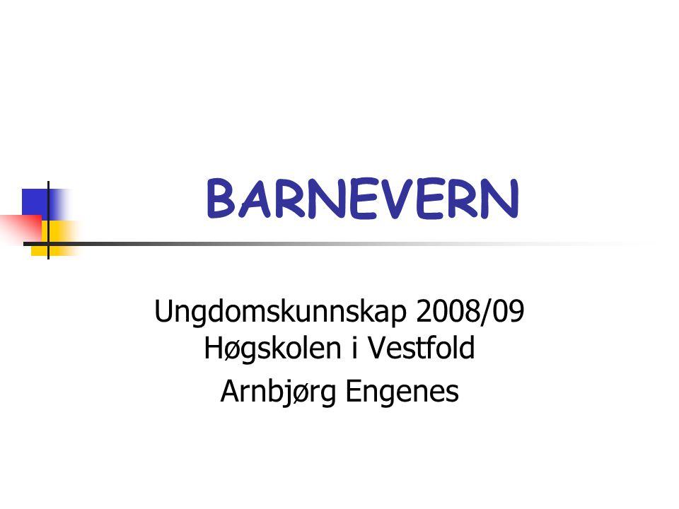 BARNEVERN Ungdomskunnskap 2008/09 Høgskolen i Vestfold Arnbjørg Engenes