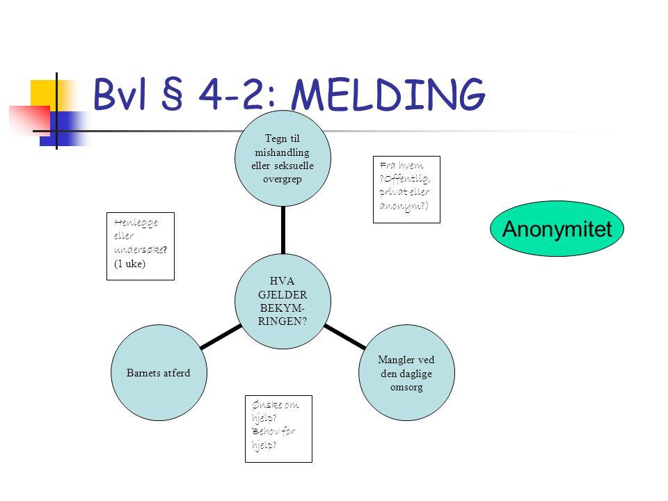 Henlegge eller undersøke? (1 uke) Ønske om hjelp? Behov for hjelp? Fra hvem ?Offentlig, privat eller anonym?) Bvl § 4-2: MELDING Anonymitet