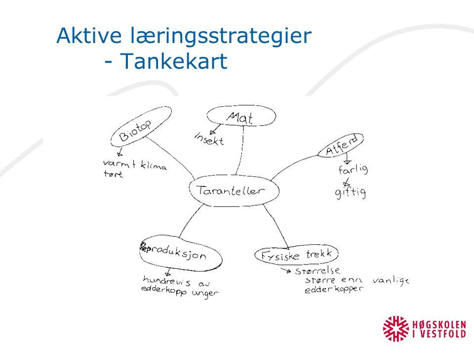 Aktive læringsstrategier - Tankekart