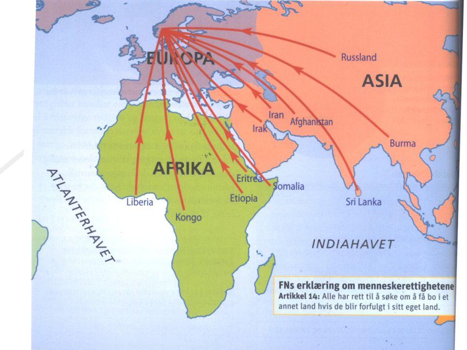 største land i afrika