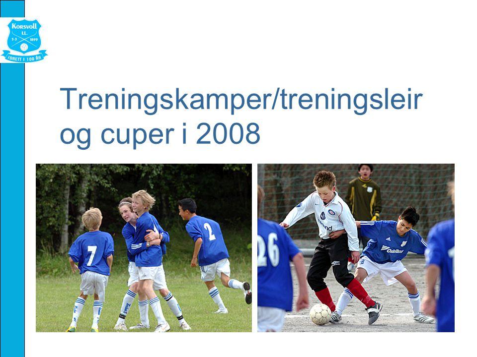 Treningskamper/treningsleir og cuper i 2008