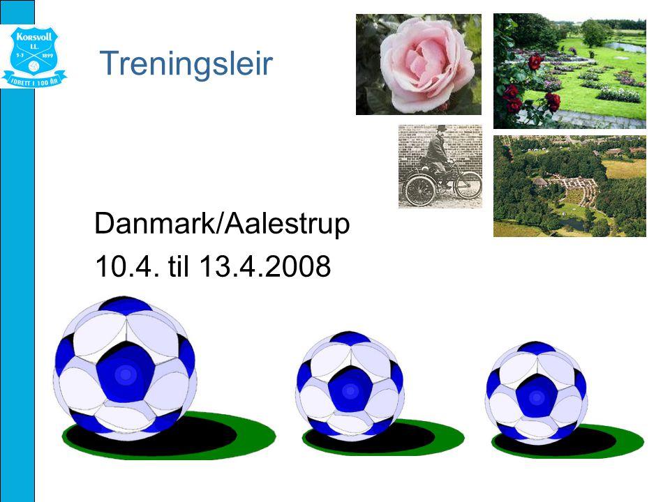 Treningsleir Danmark/Aalestrup 10.4. til 13.4.2008