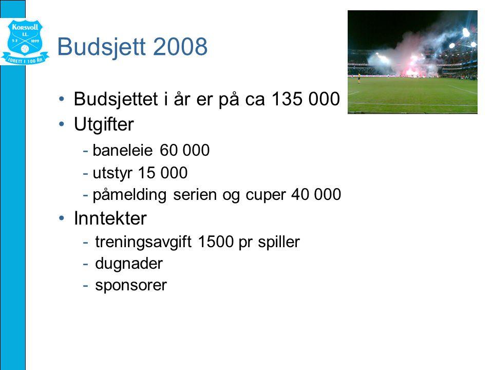 Budsjett 2008 Budsjettet i år er på ca 135 000 Utgifter - baneleie 60 000 - utstyr 15 000 - påmelding serien og cuper 40 000 Inntekter -treningsavgift 1500 pr spiller -dugnader -sponsorer