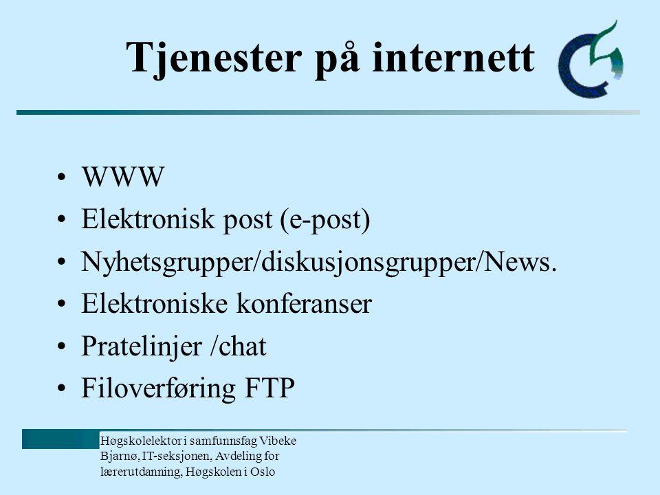 Høgskolelektor i samfunnsfag Vibeke Bjarnø, IT-seksjonen, Avdeling for lærerutdanning, Høgskolen i Oslo Hva er Internett.