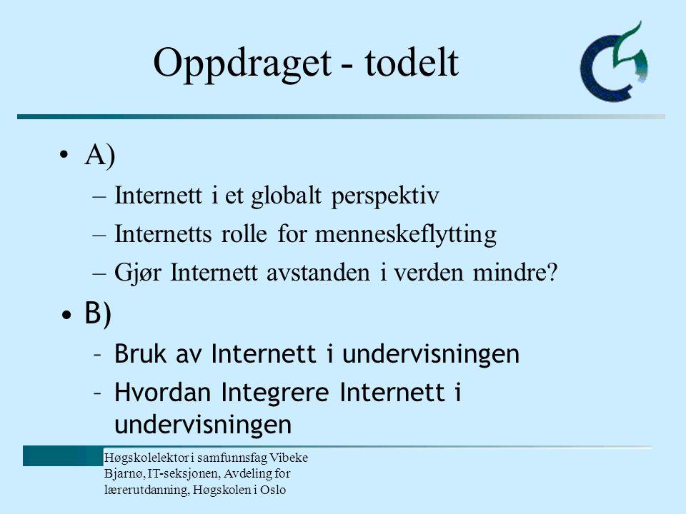 Høgskolelektor i samfunnsfag Vibeke Bjarnø, IT-seksjonen, Avdeling for lærerutdanning, Høgskolen i Oslo Farligheter.