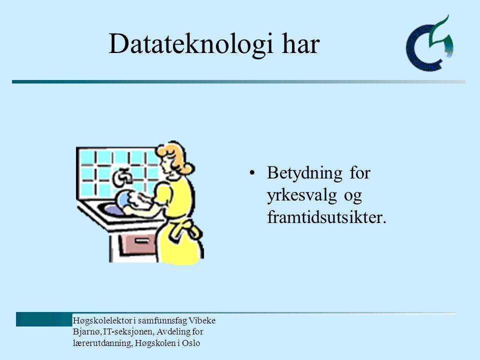Høgskolelektor i samfunnsfag Vibeke Bjarnø, IT-seksjonen, Avdeling for lærerutdanning, Høgskolen i Oslo Hvorfor Internett