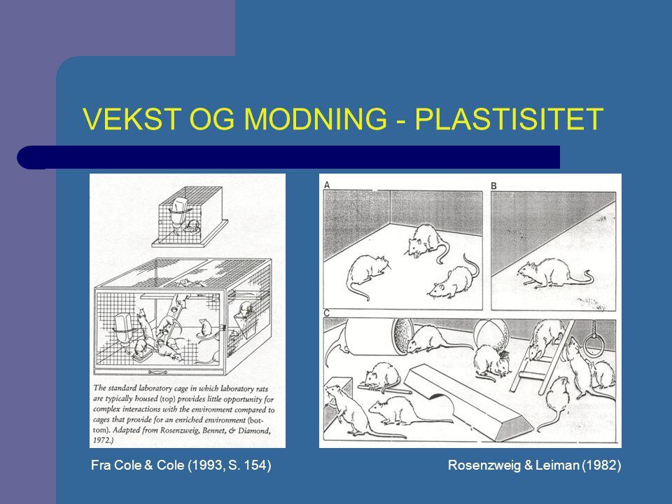 UTVIKLING 1 Bunkholdt (1994, s.