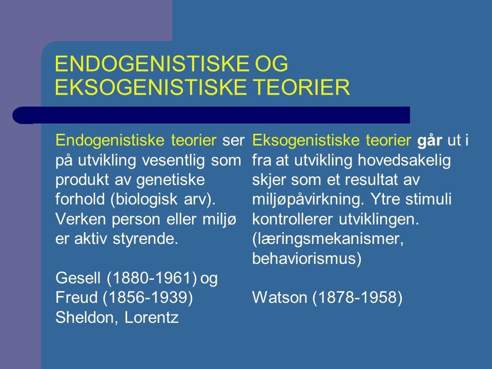 KONSTRUKTIVISTISKE OG INTERAKSJONISTISKE TEORIER Konstruktivistiske teorier ser utvikling som et resultat av både person og miljø men det er først og fremst personen som er aktiv.