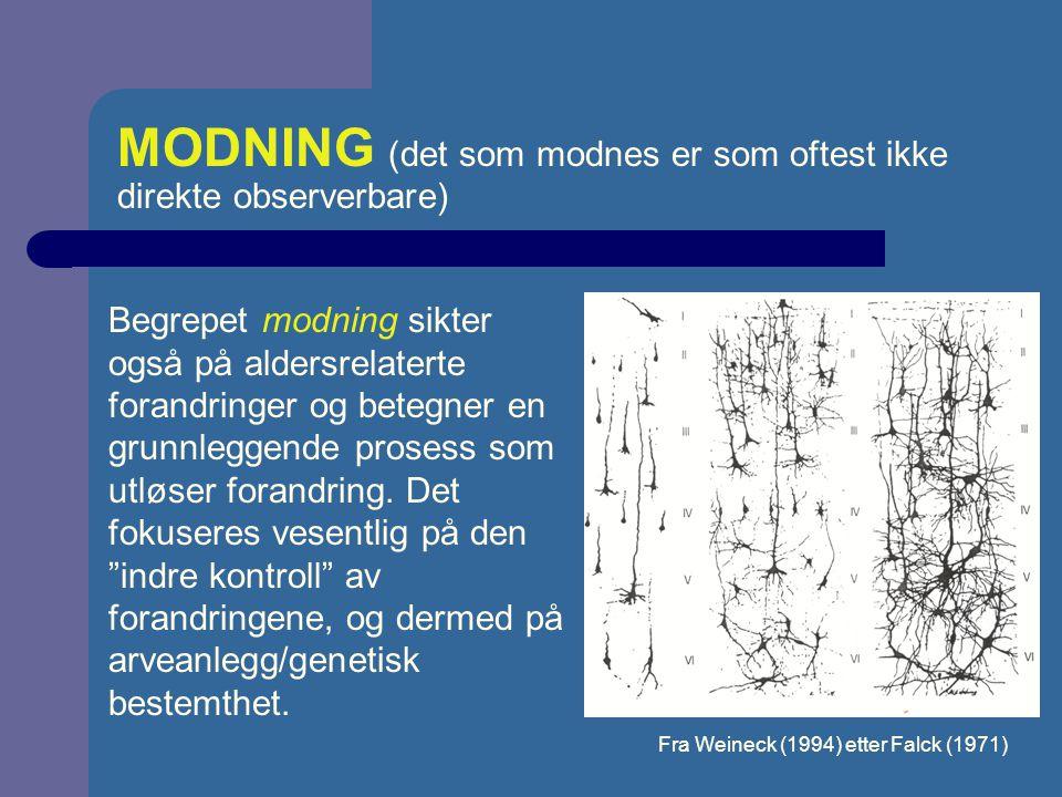 VEKST OG MODNING - PROPORSJONSENDRINGER Moen & Sivertsen, 1994