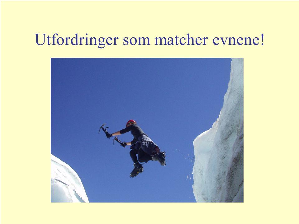 Utfordringer som matcher evnene!