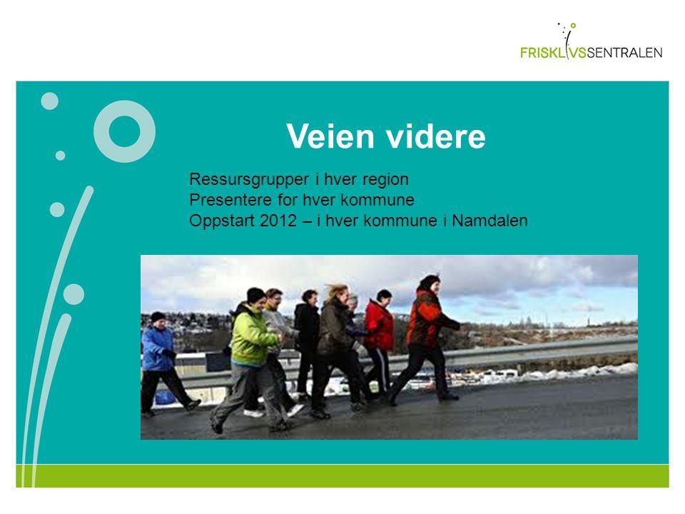 Veien videre Ressursgrupper i hver region Presentere for hver kommune Oppstart 2012 – i hver kommune i Namdalen