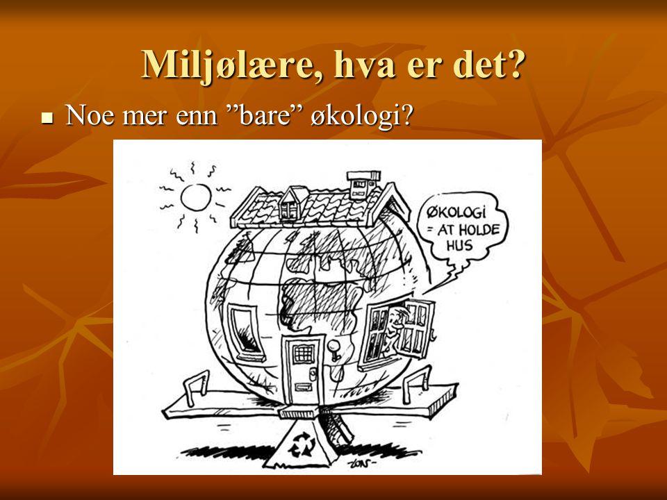 """Miljølære, hva er det? Noe mer enn """"bare"""" økologi? Noe mer enn """"bare"""" økologi?"""