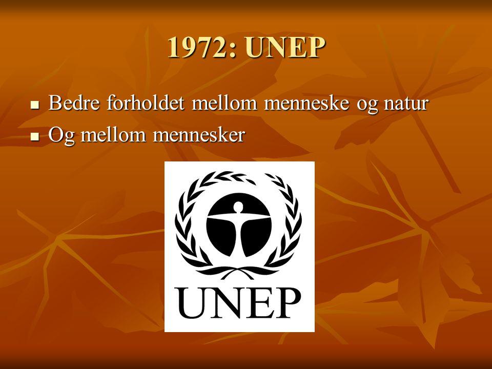 1972: UNEP Bedre forholdet mellom menneske og natur Bedre forholdet mellom menneske og natur Og mellom mennesker Og mellom mennesker