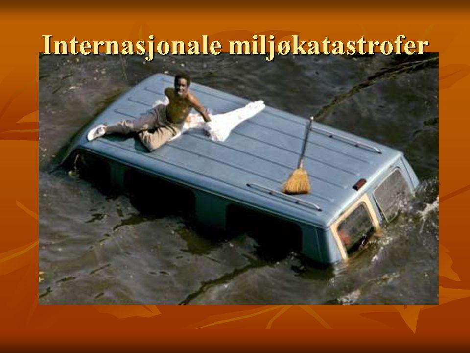 Internasjonale miljøkatastrofer