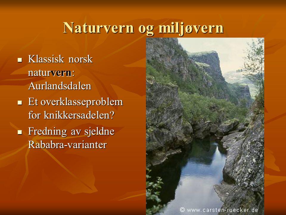 Naturvern og miljøvern Klassisk norsk naturvern: Aurlandsdalen Klassisk norsk naturvern: Aurlandsdalen Et overklasseproblem for knikkersadelen? Et ove