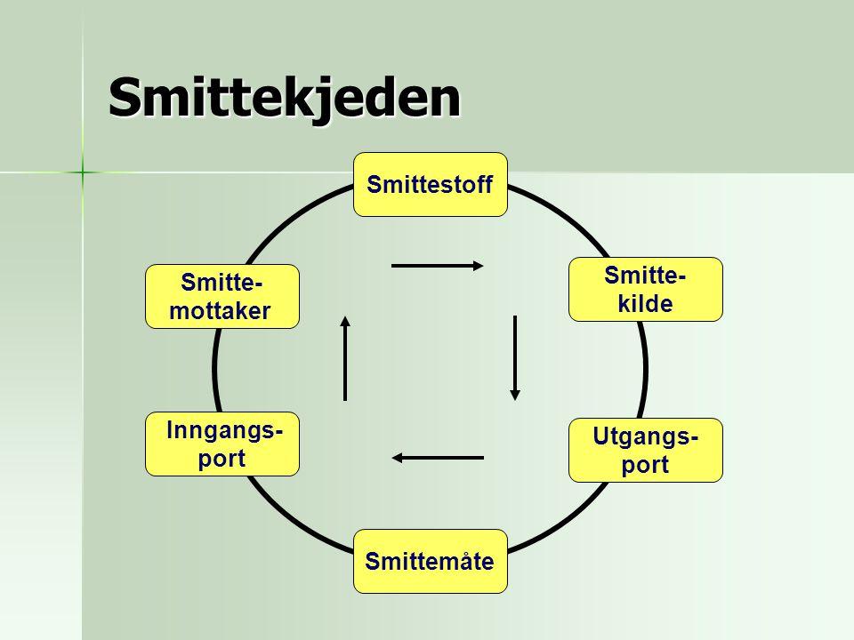 Smittekjeden Smitte- kilde Utgangs- port Smittemåte Inngangs- port Smitte- mottaker Smittestoff