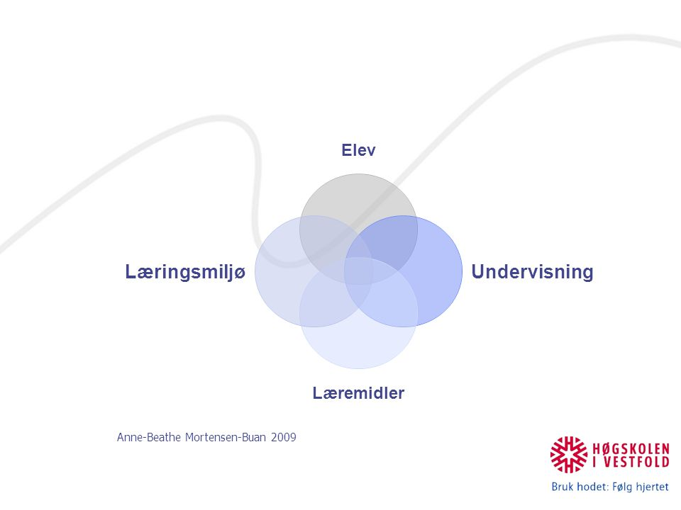 Anne-Beathe Mortensen-Buan 2009 Elev Undervisning Læremidler Læringsmiljø