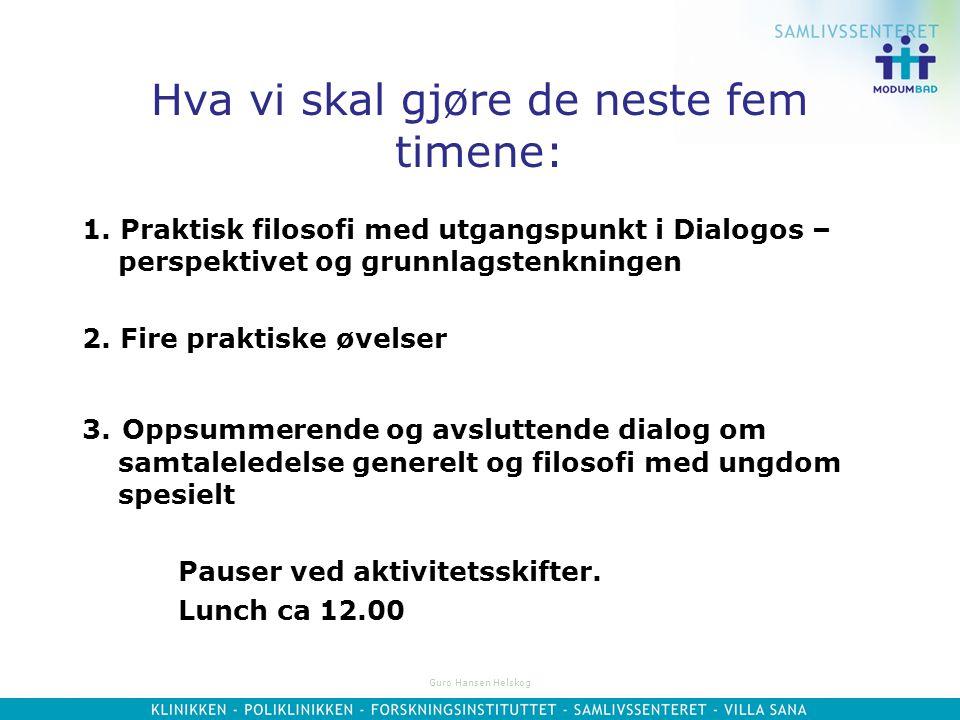 Guro Hansen Helskog Hva vi skal gjøre de neste fem timene: 1.