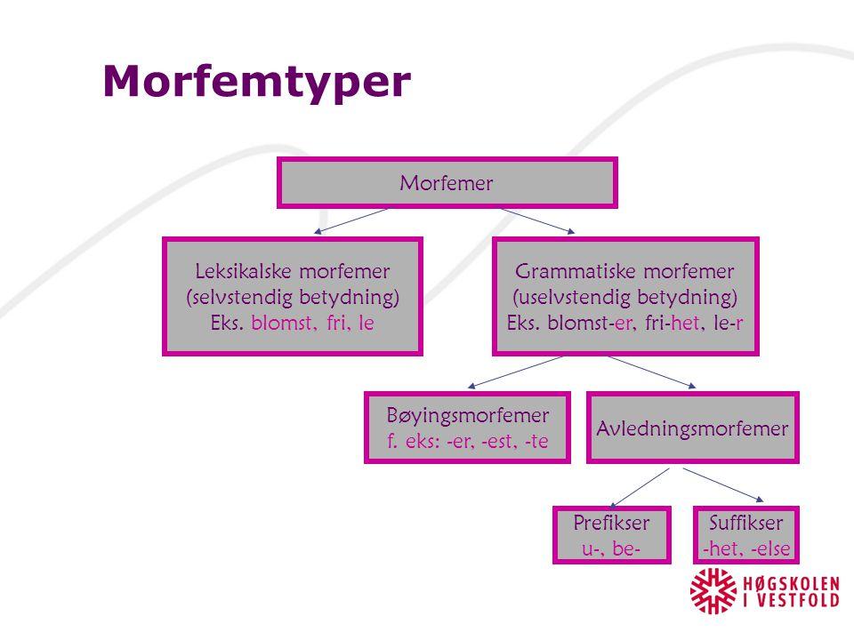 Grammatiske morfemer Uttrykker grammatiske funksjoner – må stå i relasjon til andre morfem  Bøyingsmorfemer: Morfemer som bøyer ordet eks. skriver, g