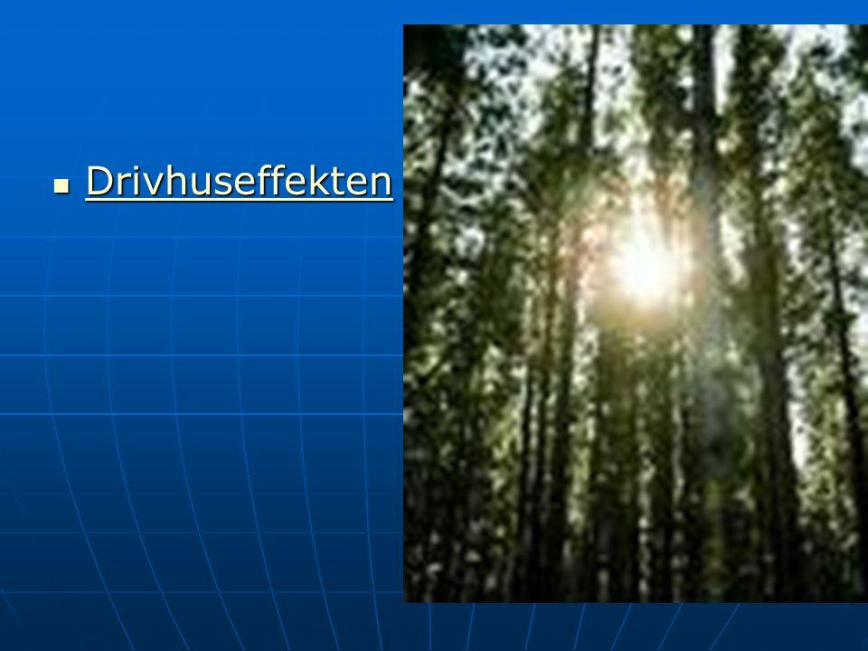 Drivhuseffekten Drivhuseffekten Drivhuseffekten