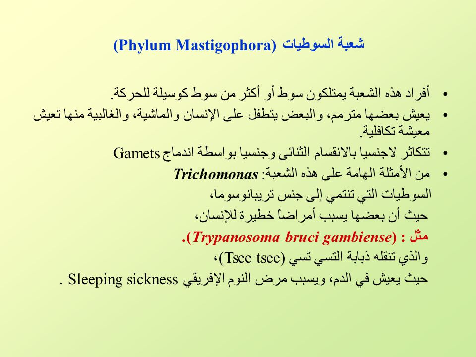 شعبة السوطيات (Phylum Mastigophora) أفراد هذه الشعبة يمتلكون سوط أو أكثر من سوط كوسيلة للحركة. يعيش بعضها مترمم، والبعض يتطفل على الإنسان والماشية، وا