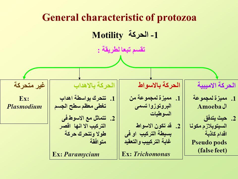 General characteristic of protozoa 1- الحركة Motility تقسم تبعا لطريقة : الحركة الاميبية 1.مميزة لمجموعة الAmoeba 2.حيث يتدفق السيتوبلازم مكونا اقدام