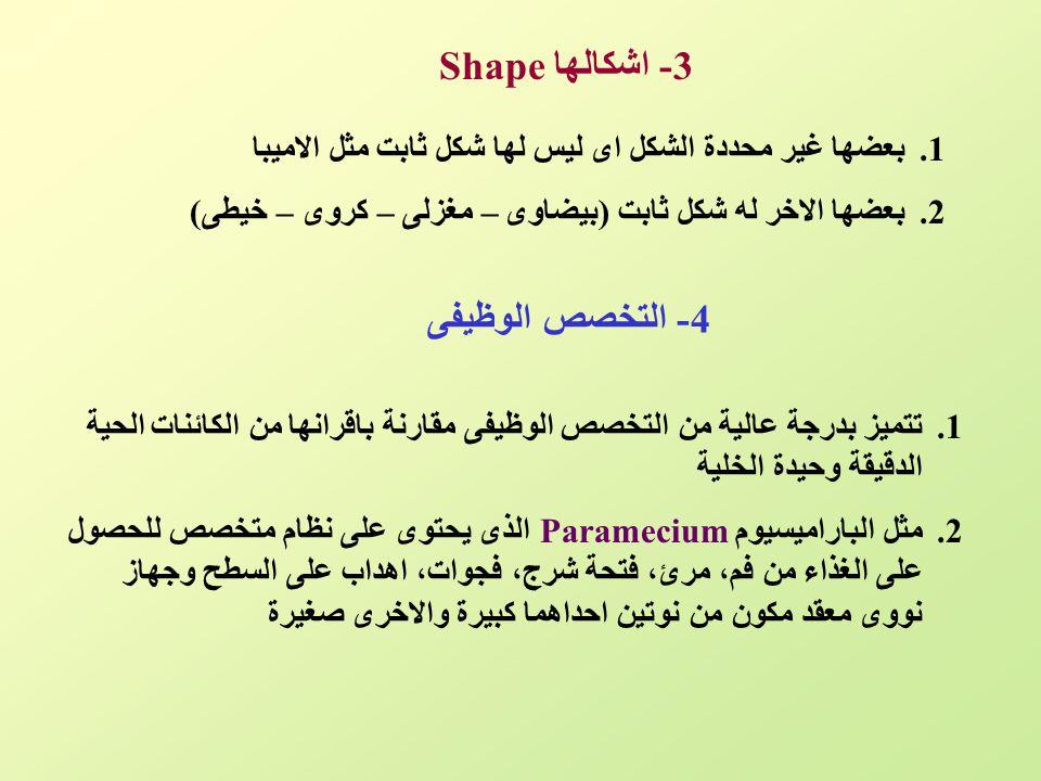 3- اشكالهاShape 1.بعضها غير محددة الشكل اى ليس لها شكل ثابت مثل الاميبا 2.بعضها الاخر له شكل ثابت (بيضاوى – مغزلى – كروى – خيطى) 4- التخصص الوظيفى 1.ت