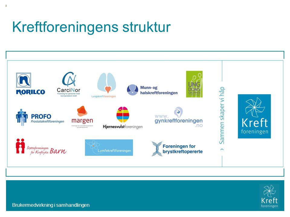 Kreftforeningens struktur Brukermedvirkning i samhandlingen 3