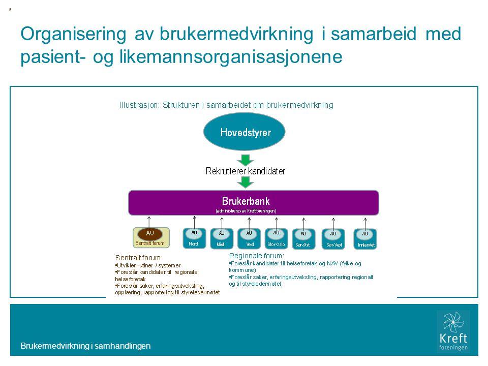 Organisering av brukermedvirkning i samarbeid med pasient- og likemannsorganisasjonene Brukermedvirkning i samhandlingen 5