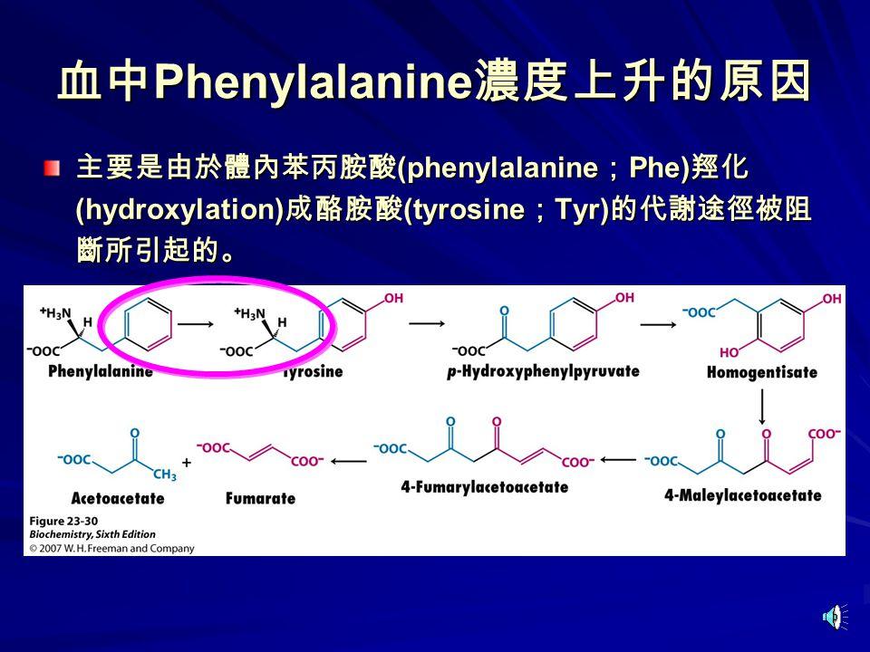 血中 Phenylalanine 濃度上升的原因 主要是由於體內苯丙胺酸 (phenylalanine ; Phe) 羥化 (hydroxylation) 成酪胺酸 (tyrosine ; Tyr) 的代謝途徑被阻 斷所引起的。