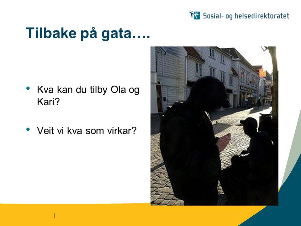 | Tilbake på gata…. Kva kan du tilby Ola og Kari? Veit vi kva som virkar?