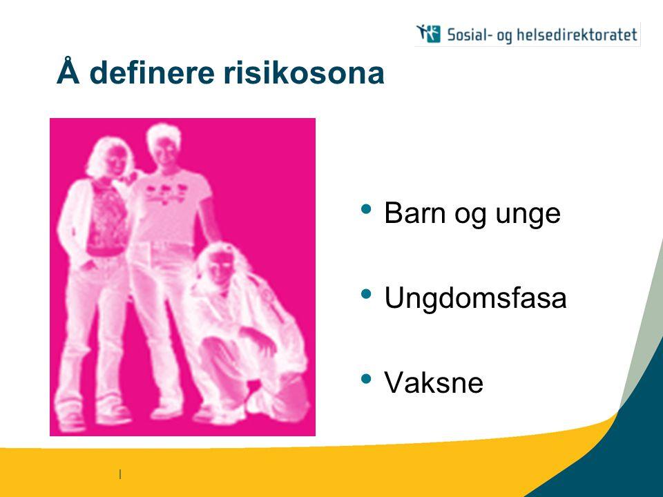 | Å definere risikosona Barn og unge Ungdomsfasa Vaksne
