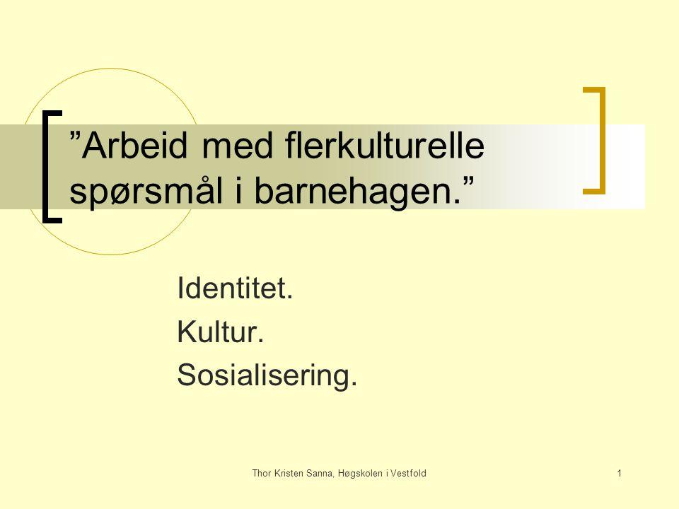 """Thor Kristen Sanna, Høgskolen i Vestfold1 """"Arbeid med flerkulturelle spørsmål i barnehagen."""" Identitet. Kultur. Sosialisering."""