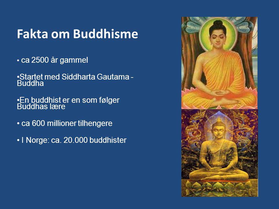 Fakta om Buddhisme ca 2500 år gammel Startet med Siddharta Gautama - Buddha En buddhist er en som følger Buddhas lære ca 600 millioner tilhengere I No