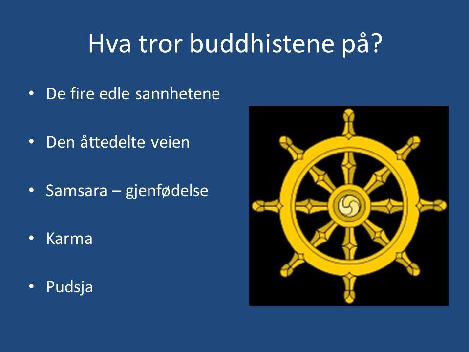 Hva tror buddhistene på? De fire edle sannhetene Den åttedelte veien Samsara – gjenfødelse Karma Pudsja