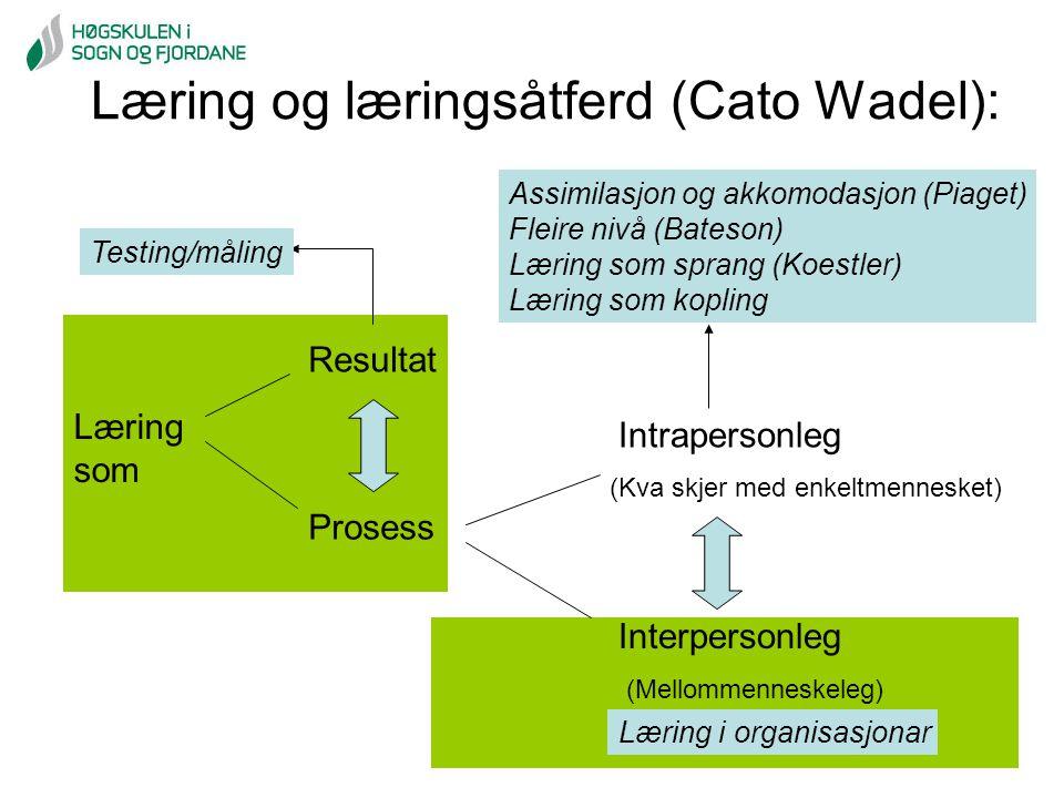 Læring og læringsåtferd (Cato Wadel): Læring som Prosess Resultat Intrapersonleg Interpersonleg (Mellommenneskeleg) (Kva skjer med enkeltmennesket) As