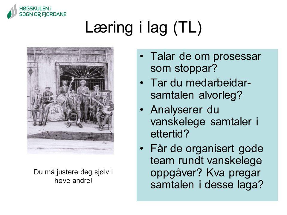 Læring i lag (TL) Talar de om prosessar som stoppar? Tar du medarbeidar- samtalen alvorleg? Analyserer du vanskelege samtaler i ettertid? Får de organ