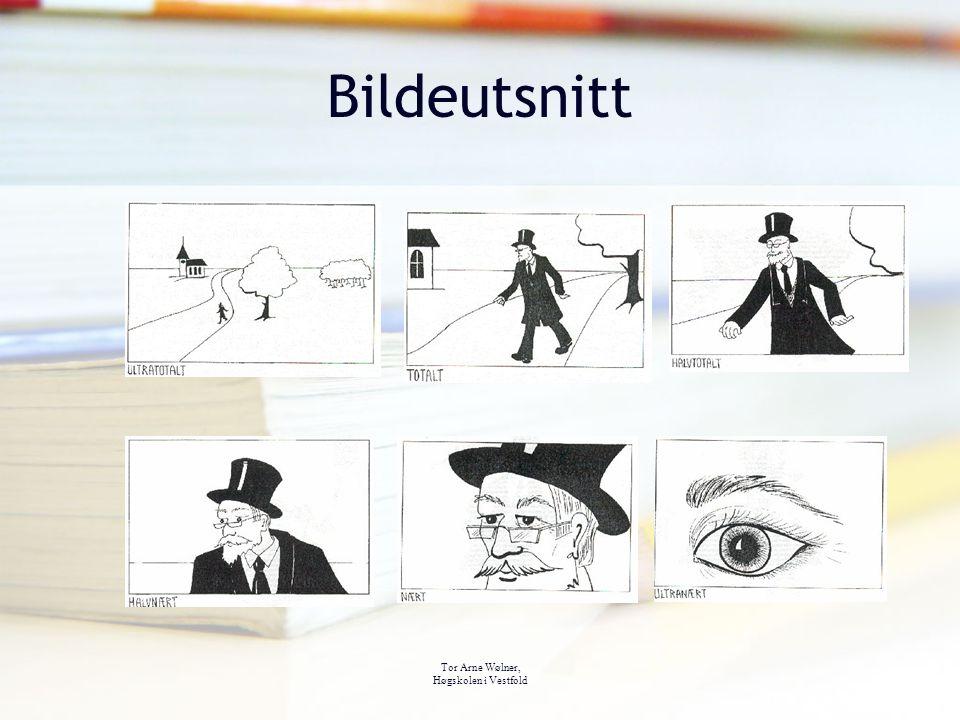 Tor Arne Wølner, Høgskolen i Vestfold Bildeutsnitt