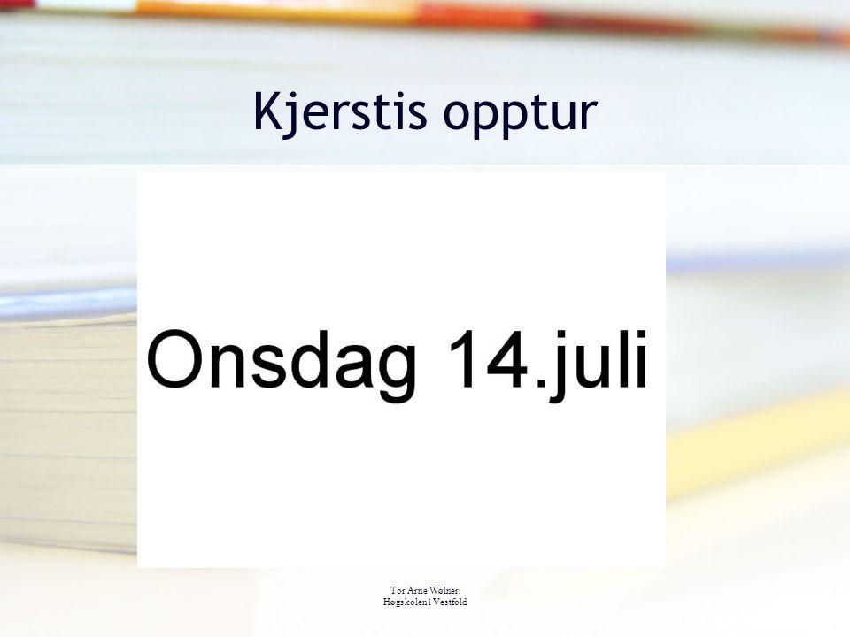 Tor Arne Wølner, Høgskolen i Vestfold Kjerstis opptur