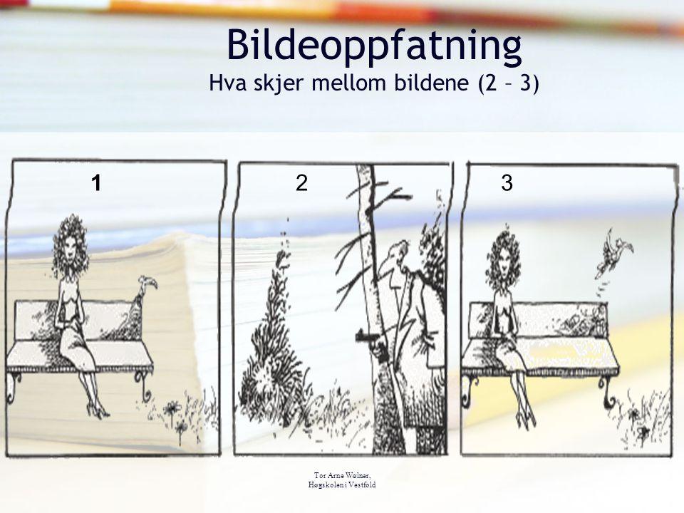 Tor Arne Wølner, Høgskolen i Vestfold Bildeoppfatning Hva skjer mellom bildene (2 – 3) 123123