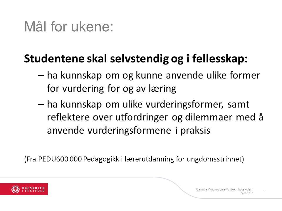 Oppgave 1.Lag grupper på 4 stk; 2 fra norsk og 2 fra matte 2.Velg 2 prinsipper for vurdering for læring og gjør rede for disse faglig 3.Gå sammen med en annen gruppe (nå er dere 8 stk sammen!) og velg deg en læringsvenn 4.Presenter din gruppes redegjørelse for prinsipper for din læringsvenn Camilla Wiig, HIVE14