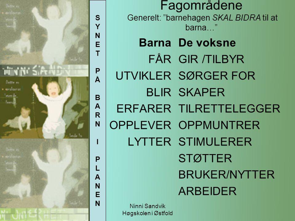"""Ninni Sandvik Høgskolen i Østfold Fagområdene Generelt: """"barnehagen SKAL BIDRA til at barna…"""" Barna FÅR UTVIKLER BLIR ERFARER OPPLEVER LYTTER De voksn"""