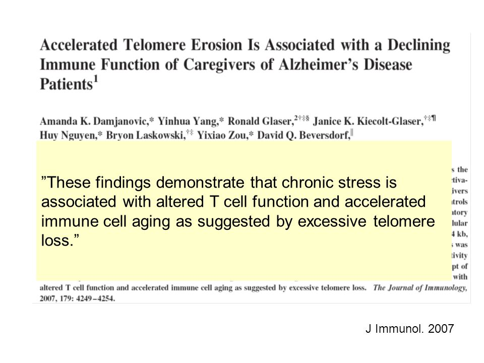 """J Immunol. 2007 """"These findings demonstrate that chronic stress is associated with altered T cell function and accelerated immune cell aging as sugges"""